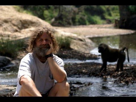 Stress: Portrait of a Killer [Full Documentary]
