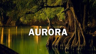 """AURORA"" Latin Trap Beat Instrumental 