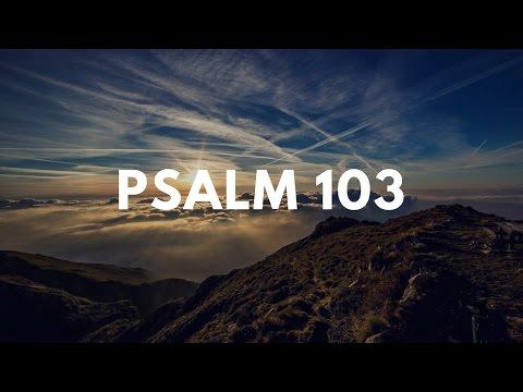 Vinesong - Psalm 103 (Lyric Video)