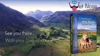 Countryside Dog Walks in the Lake District - South Region