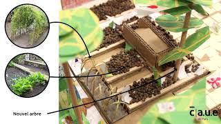 École maternelle Jean Dolent : projet d'aménagement de la cour Oasis