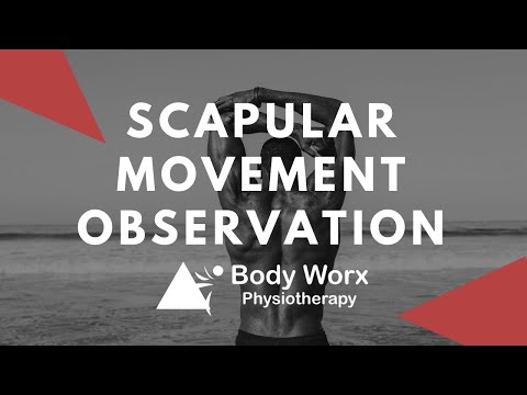 Scapular movement observation - BodyWorx Physiotherapy Newcastle