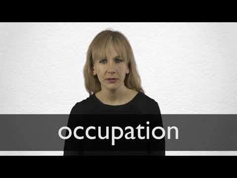 "Hindi Translation of ""occupation"" 