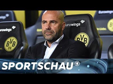BVB: An diesen fünf Schrauben muss Peter Bosz drehen  |Sportschau