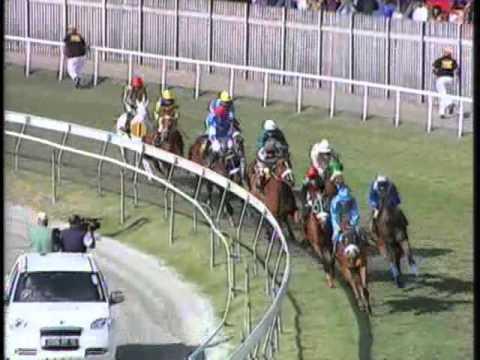 Phoenix maiden cup 2011 champ de mars horse racing- senor versace
