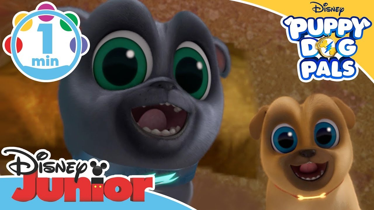 Puppy Dog Pals Dig Song Disney Junior Uk Youtube