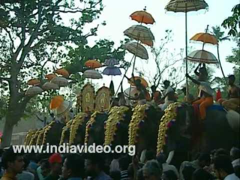 Cherai Pooram - Elephants all the way