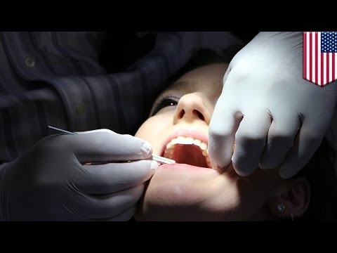 Stem cells in teeth: How scientists can harvest stem cells from human teeth - TomoNews