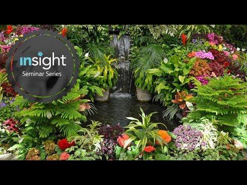 6th September 2017 - Cameron Francis - A trip through the garden: plant based presentations