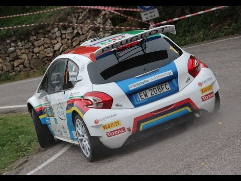 33° Rally Due Valli 2015 - Tutte Le Auto - PS3 / PS8 (HD)