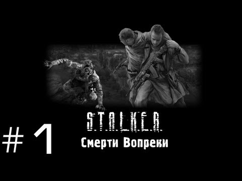 S.T.A.L.K.E.R. Смерти Вопреки - Часть 1 (Начало)