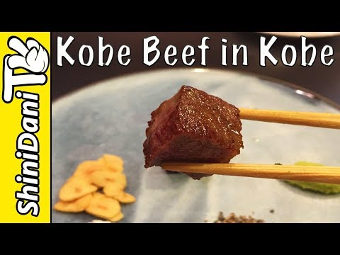 Japan Travel Vlog Day 2 - KOBE Beef in KOBE