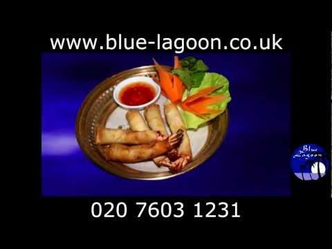 Thai Restaurant London   Blue Lagoon Restaurant Kensington High Street   Thai Cuisine