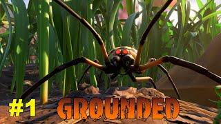 Grounded - O Início do novo Jogo de SOBREVIVÊNCIA (Gameplay PT-BR Português)
