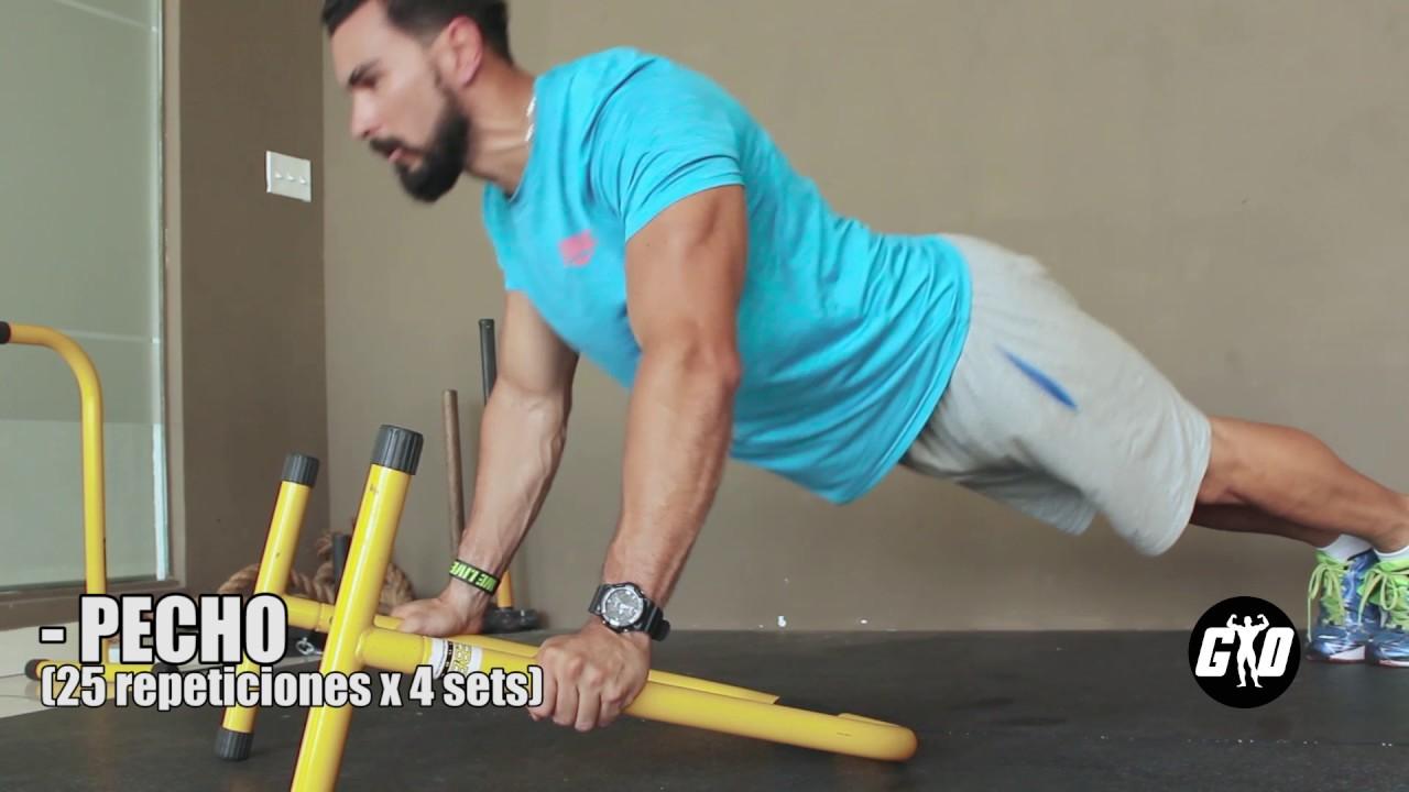 que musculos trabaja la barra paralela