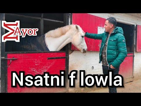 Othman Mayor - Nassitini F Lowla   عثمان مايور