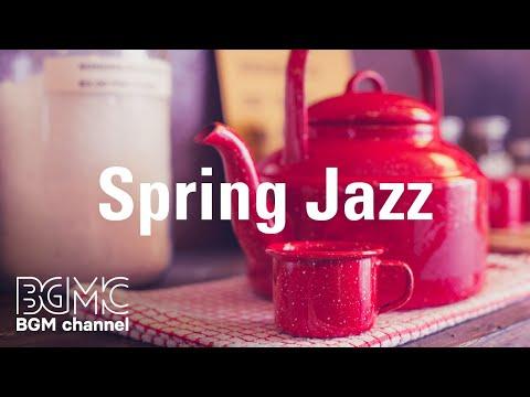 Spring Jazz - Sunny Bossa Nova & Relaxing Jazz Accordion for Work, Study, Spring Mood