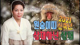 신점으로본 2021신축년 원숭이띠 운세/ 속삼재 /보이지않는 고난/56년.68년.80년.92년생 사주팔자