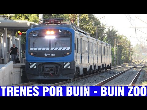 Fepasa Y Tren Central | Mix De Trenes Entre Buin Y Buin Zoo