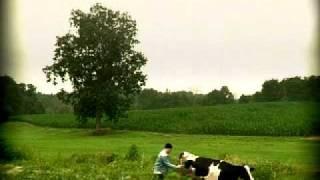 """Yahoo! Search Broadcast Spot """"Cow Poke #2"""""""