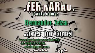 Hermandos Zeizar  - Amores por Correo - Karaoke Demo