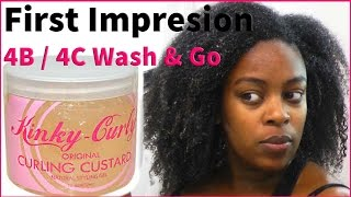 FIRST IMPRESSIONS: 4b / 4c Wash and Go feat. Kinky Curly Curling Custard