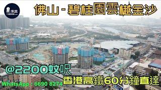碧桂園雲樾金沙_佛山|@2200蚊呎|香港高鐵60分鐘直達|香港銀行按揭 (實景航拍) 2021