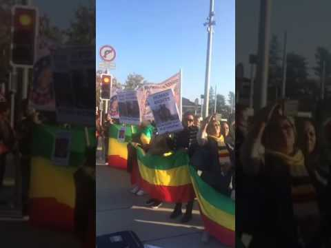 Ethiopians rally in front of UN office in Geneva, Switzerland