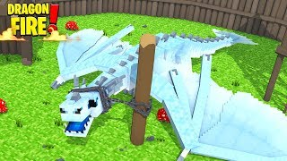 FROSTY THE DRAGON IS GROWING! - Minecraft DragonFire