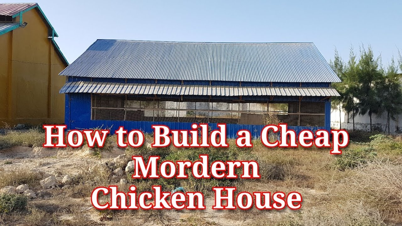 How To Build A Cheap Modern Chicken House Youtube