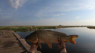 Очень ИНТЕРСНАЯ рыбалка КАСТИНГОВОЙ сетью в этом сезоне.САЗАН на каждом подъеме...