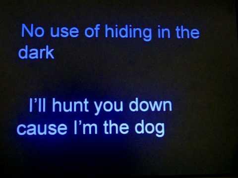 dog the bounty hunter theme song N lyrics