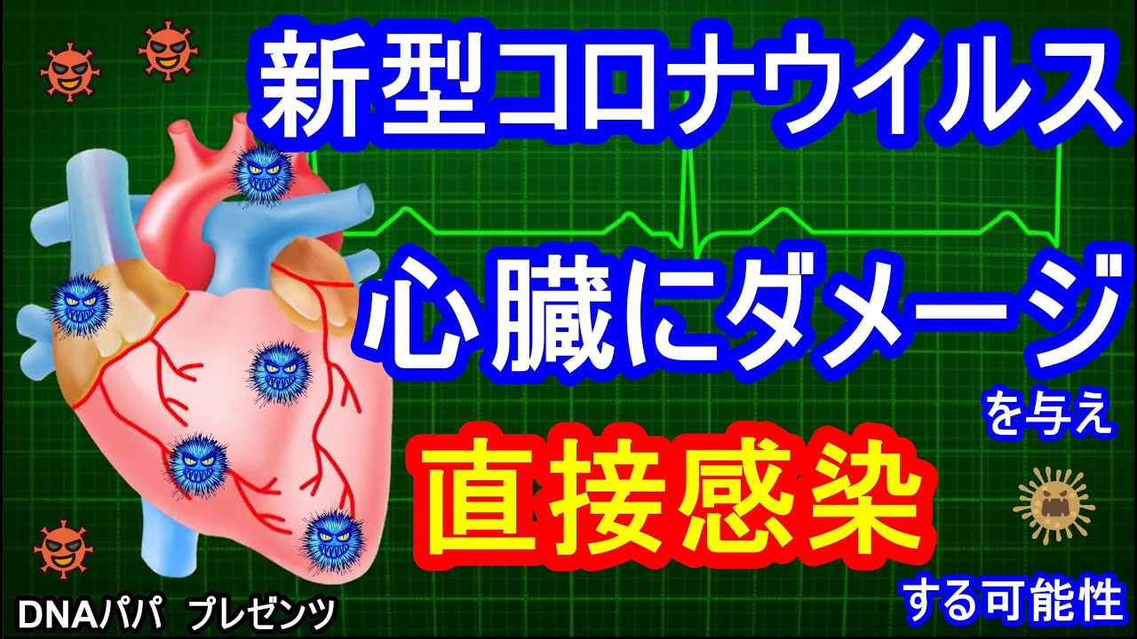 新型コロナウイルス 心臓にダメージを与え 直接感染する可能性