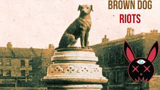 Students Riot To Take Down A Statue . . . Of A Dog