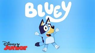 Official Trailer 🎥| Bluey | Disney Junior