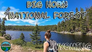 Big Horn National Forest || Wyoming