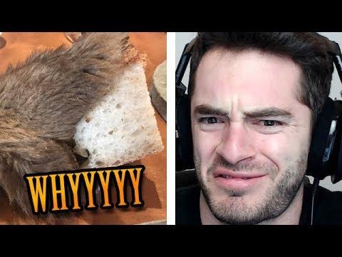 Bread + roadkill = gourmet