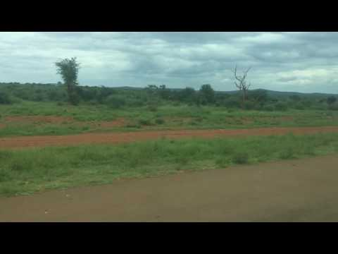 Federal Airlines - Madikwe (East) Landing Strip