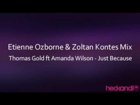Thomas Gold ft Amanda Wilson - Just Because (Etienne Ozborne & Zoltan Kontes Mix)