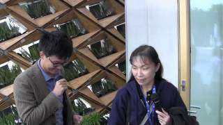 Solar Decathlon Europe 2012 Para Eco-House of Tongji University of China.mp4