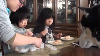 子供達(孫)朝ご飯はおにぎりですね。 シベリアンハスキー犬 クッキー...