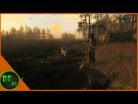 I Have The Ultimate DUCK HUNTING Setup! TheHunter Classic 2020