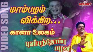 கானா பாடல்கள் - புளியந்தோப்பு பழனி -Maambazham Vikkira | Gana Song by Gana Pullianthopu Palani -