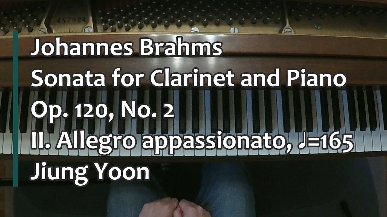 Piano Accompanim Clarinet in B Flat 120 Brahms: Clarinet Sonatas Op Clarinet