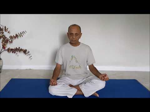 Sama Vritti Pranayama (Square Wave or Equal Rotation)