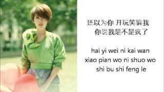 杨丞琳 Rainie Yang - 自作自受 Zi zuo zi shou  (Lyrics / Pinyin)