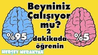 Zeka seviyenizi görebileceğiniz beyninizi zorlayacak 6 soru