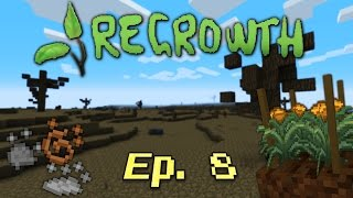Regrowth Ep 8 - Copper, Iron, Coal Essence & Regular Infusion Stone