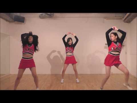 Gleedom - Nutbush City Limits (Glee Dance Cover)