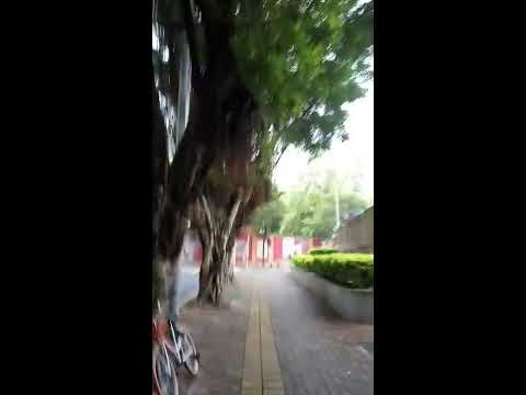 Walking in Shenzhen, China